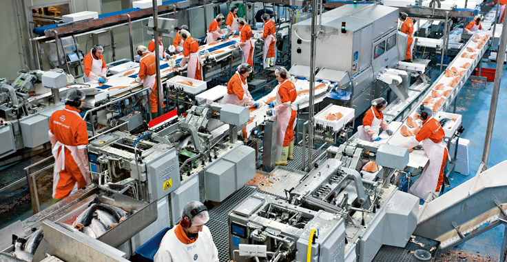 What Sustainability Equates To In Food Manufacturing