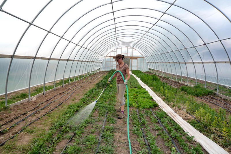 argriculture
